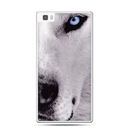 Huawei P8 Lite etui wilk