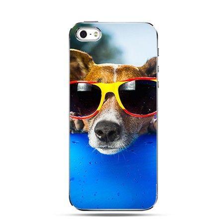 Etui pies w okularach