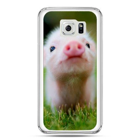 Etui na telefon Galaxy S7 świnka