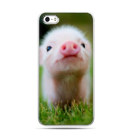 iPhone 6 etui na telefon świnka