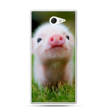 Sony Xperia M2 etui świnka