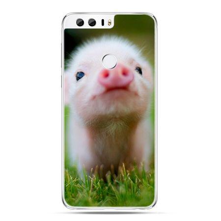 Etui na Huawei Honor 8 - świnka