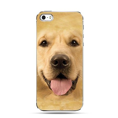 Etui pies labrador golden Face 3d