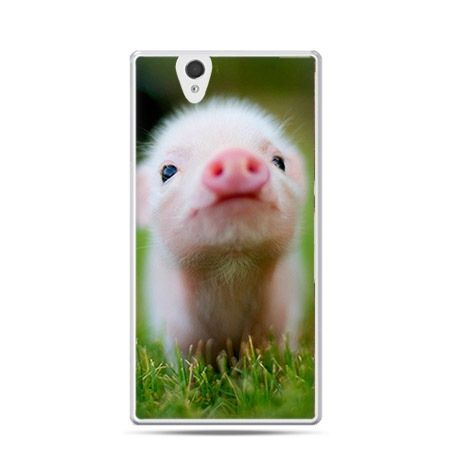 Śmieszna świnka etui z nadrukiem dla Xperia Z twarde, ochronne